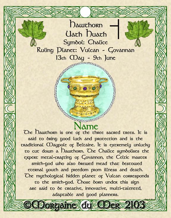 Hawthorn-Chalice-Druid-Tree-Lore-Celtic-Zodiac-Print
