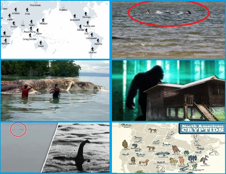 BIGFOOT, SEA MONSTERS & HAS NESSIE RETURNED? NEW CRYPTID SIGHTINGS…